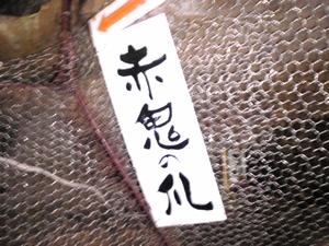 ootaki_cave_201008140270