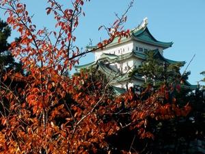 mejyokoen_201006812