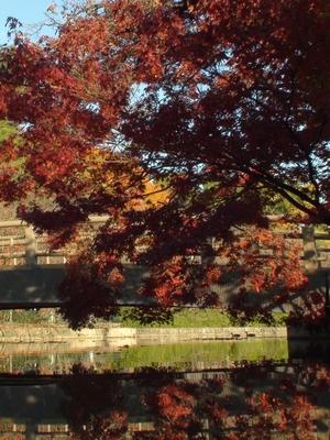 mejyokoen_201006857