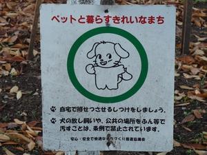 mejyokoen_201006888