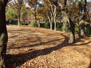 mejyokoen_201006892