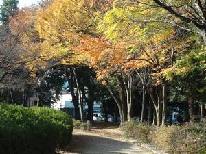 mejyokoen_201006909