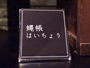 kitanagoya_rekishiminzoku_museum07394