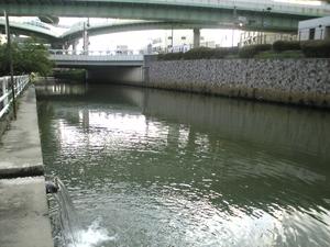 shimizuwakuwakusui0663
