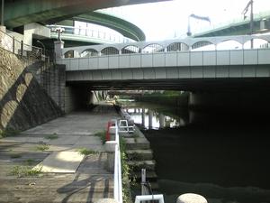 shimizuwakuwakusui0670