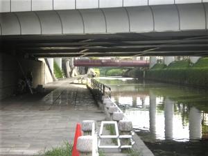 shimizuwakuwakusui0671