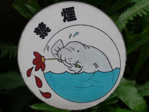 todagawaryokuchi04173