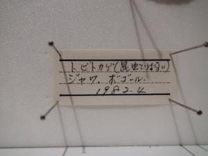 todagawaryokuchi04209