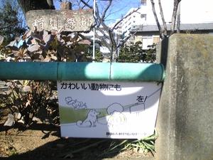 shizuoka0361