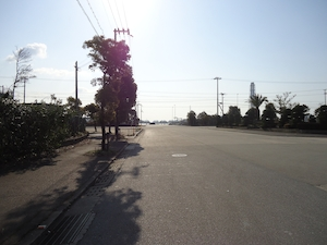 himejikou201301988