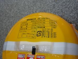 tokushima09310