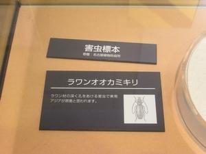 nagoya_maritime_museum_0250