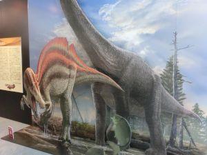 fukuiprefecturaldinosaurmuseum3136