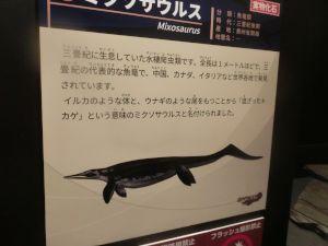 fukuiprefecturaldinosaurmuseum3139