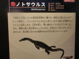 fukuiprefecturaldinosaurmuseum3143