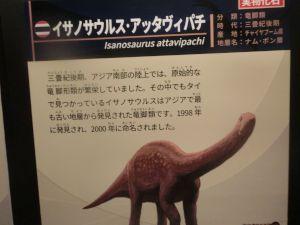 fukuiprefecturaldinosaurmuseum3146