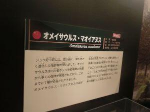 fukuiprefecturaldinosaurmuseum3156