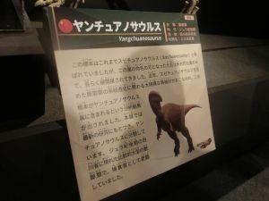 fukuiprefecturaldinosaurmuseum3158