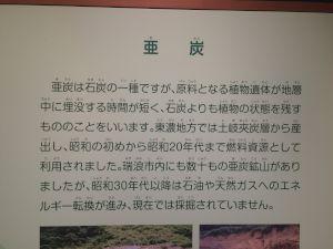kaseki 11.15.23