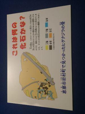 kaseki 11.16.07