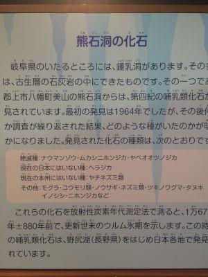 kaseki 11.20.35
