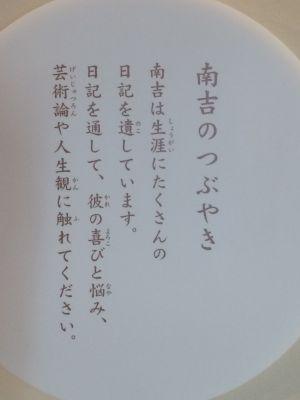 gon_fox 10.27.29