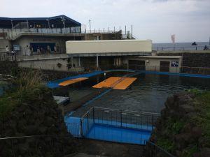 echizen-aquarium 11.27.44-2