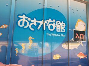 echizen-aquarium 11.39.25
