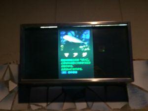 echizen-aquarium 11.50.44