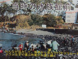 echizen-aquarium 14.10.42