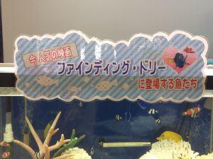 echizen-aquarium 14.11.32
