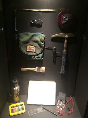 fukuiprefecturaldinosaurmuseum 13.24.41