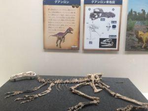 fukuiprefecturaldinosaurmuseum 13.29.01