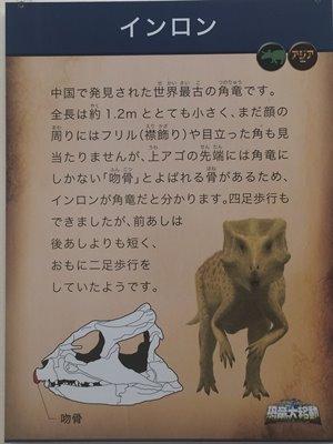 fukuiprefecturaldinosaurmuseum 13.29.54