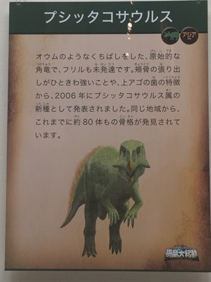 fukuiprefecturaldinosaurmuseum 13.30.12