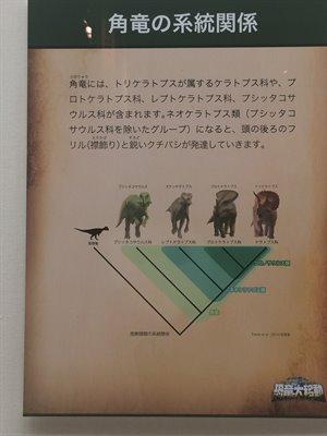 fukuiprefecturaldinosaurmuseum 13.30.29