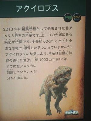 fukuiprefecturaldinosaurmuseum 13.31.12