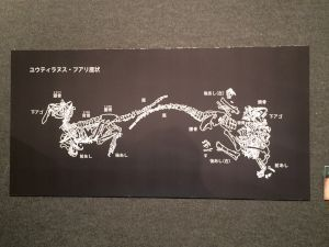fukuiprefecturaldinosaurmuseum 13.33.02