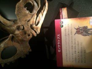 fukuiprefecturaldinosaurmuseum 13.34.26