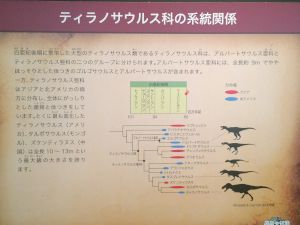 fukuiprefecturaldinosaurmuseum 13.35.54