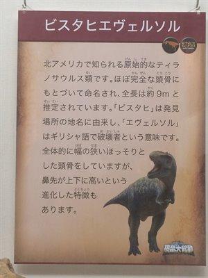 fukuiprefecturaldinosaurmuseum 13.36.10