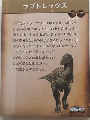 fukuiprefecturaldinosaurmuseum 13.36.50