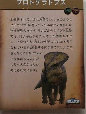fukuiprefecturaldinosaurmuseum 13.37.45