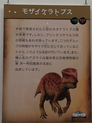 fukuiprefecturaldinosaurmuseum 13.37.57