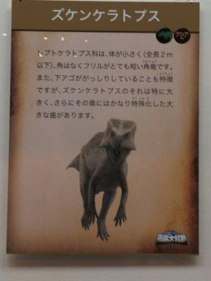 fukuiprefecturaldinosaurmuseum 13.38.10