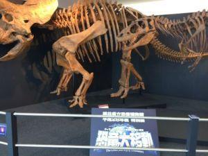 fukuiprefecturaldinosaurmuseum 13.44.05