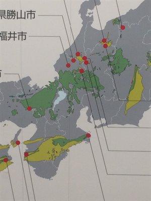 fukuiprefecturaldinosaurmuseum 14.02.53