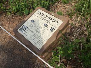 fukuiprefecturaldinosaurmuseum 16.12.48