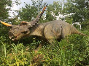 fukuiprefecturaldinosaurmuseum 16.13.29