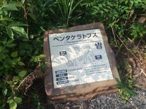 fukuiprefecturaldinosaurmuseum 16.13.58